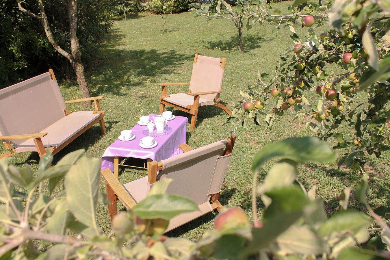 Outdoors Lounging Asa Residence Private Villa Kras Slovenia