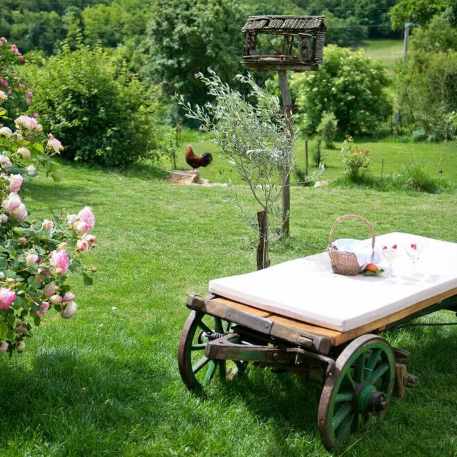 Slovenia benessere in ASA Rose garden