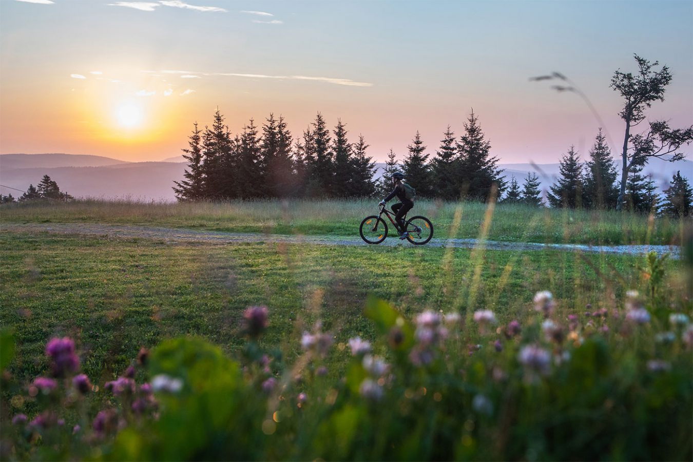 Active Holidays Bicycling Rogla Asa Residence Private Villa Kras Slovenia